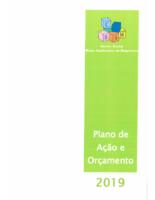 PLANO DE AÇÃO E ORÇAMENTO 2019